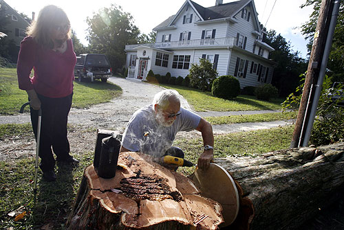 Linda Nicola, owner of Colonial Manor Inn in Onancock, watches as beekeeper Paul Young seals a beehive inside of a cedar log Wednesday. Young transported the bees to his farm after tree removal workers found thousands of bees inside the dead tree.